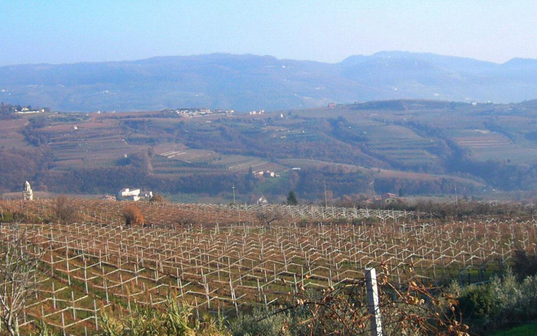 Navštívili jsme severoitalskou vinařskou oblast Valpolicella