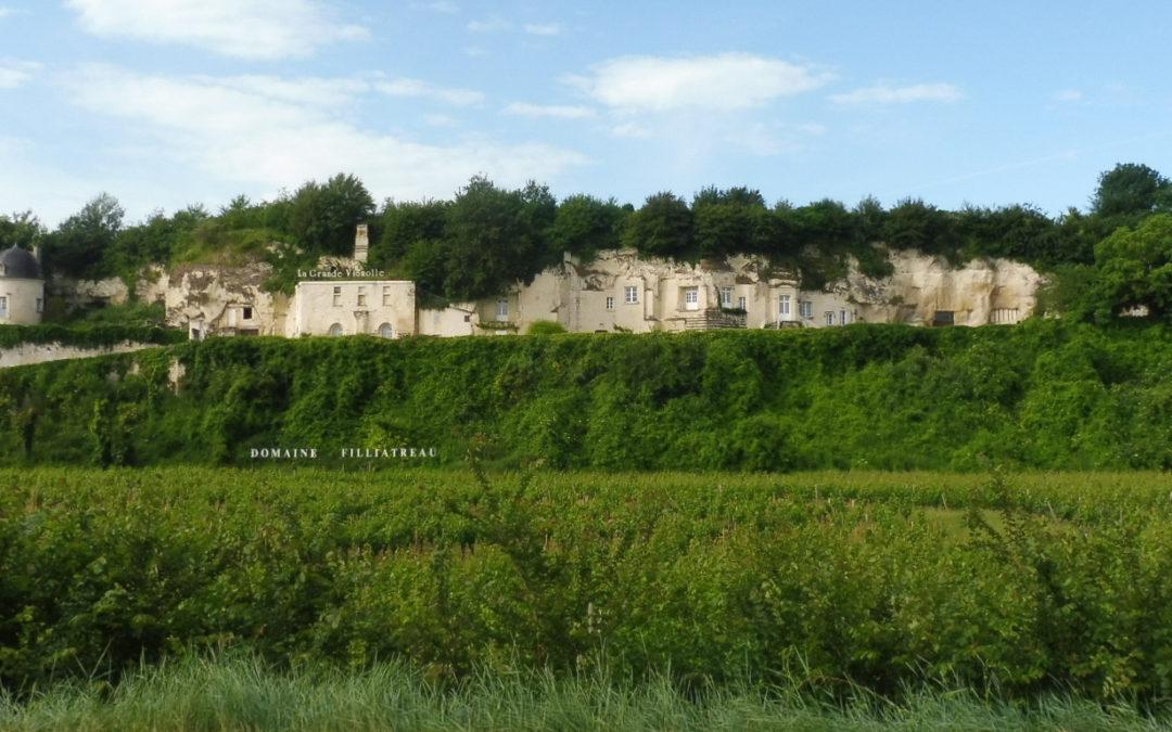 Putování za víny Loire  2018